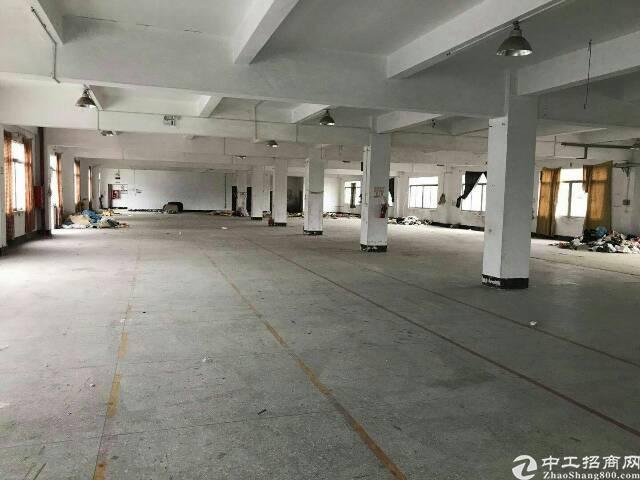 横岗水官高速出口228工业区厂房1750平方出租-图3