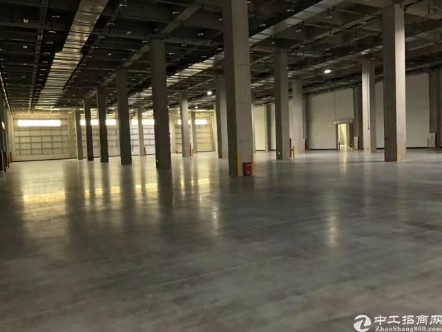 茶山镇新建钢构厂房面积6000平方
