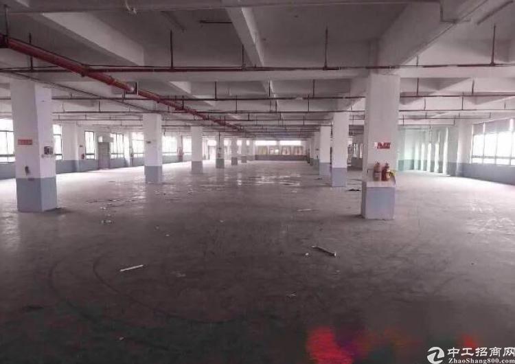 龙岗坪山工业区优惠出租单层2500平方米厂房