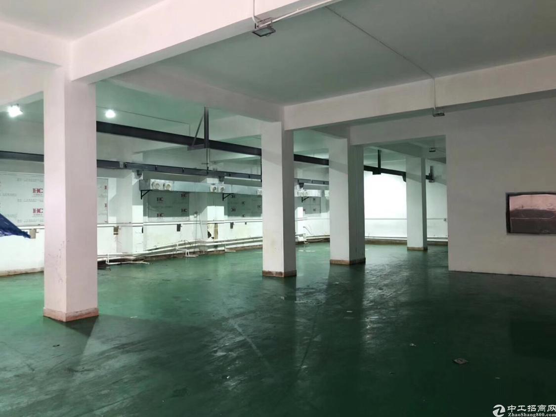 福永新和沿江高速出口新出厂房一楼1500平方米带装修免转让费-图3