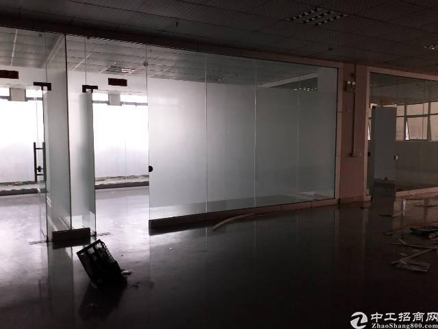沙井680平方带豪华精装修厂房出租-图2