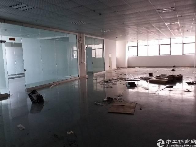 沙井680平方带豪华精装修厂房出租-图4