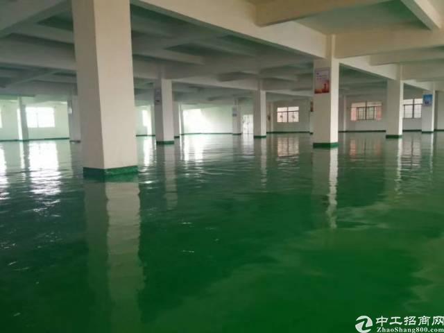 惠州惠城区水口带全新地坪漆楼上厂房出租