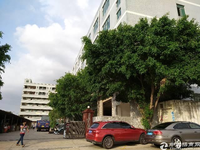 龙岗坪地工业园饭堂一楼600平出租