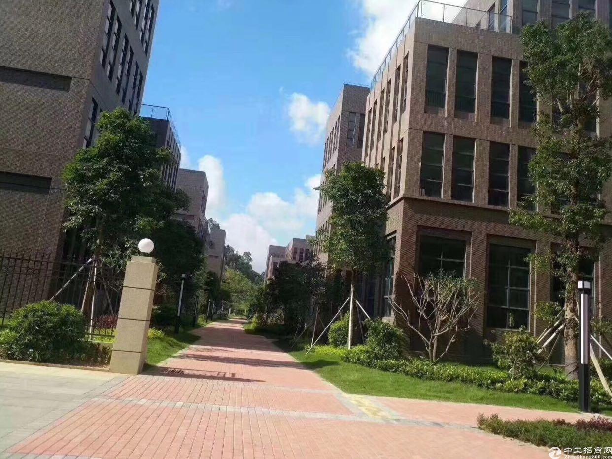 布吉花园式红本独院24000平方可以做数据库低价出租-图4