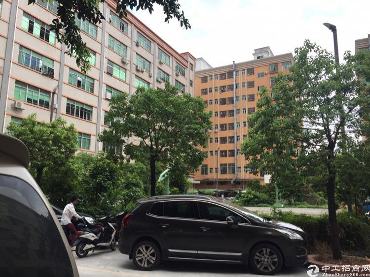福永塘尾新出楼上一整层2100平方带精装修免转让费厂房出租