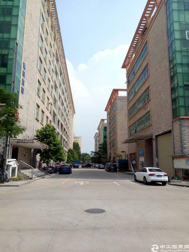 坑梓大型工业园带装修厂房招租三楼2600平米