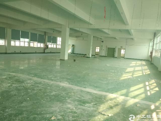 沙井沙三大型工业园区精装修厂房1600平方二楼整层-图2