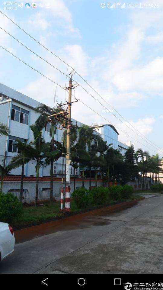 万江新出独院楼房6500平米现成办公室