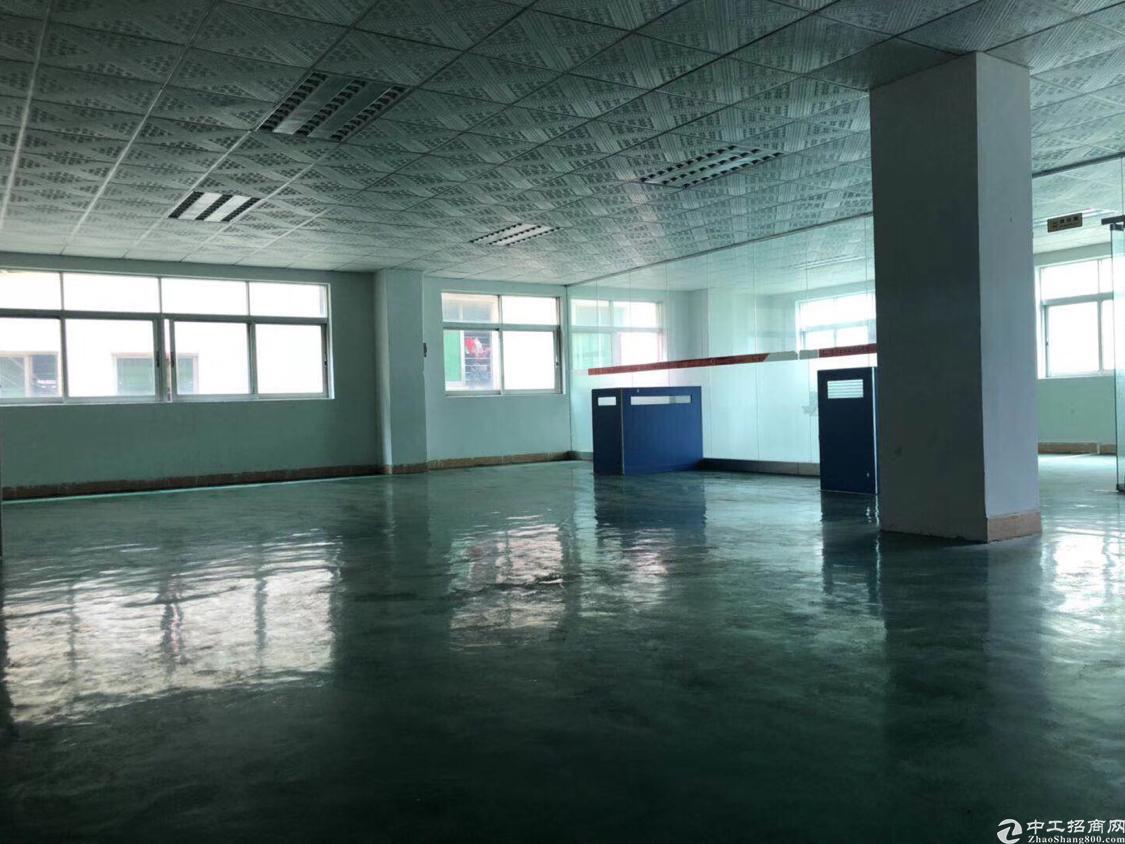 福永新和沿江高速出口新出厂房一楼1500平方米带装修免转让费-图5