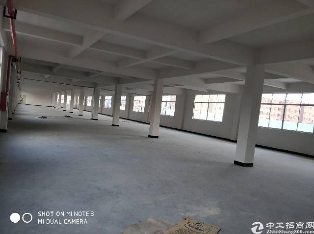 常平新出标准厂房3楼1500平