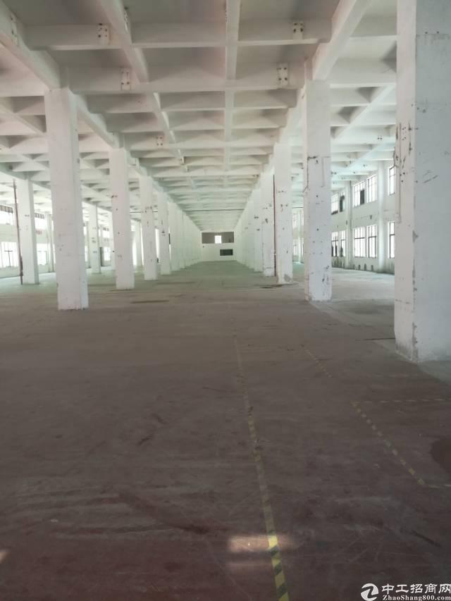 一楼7米高标准厂房2000方