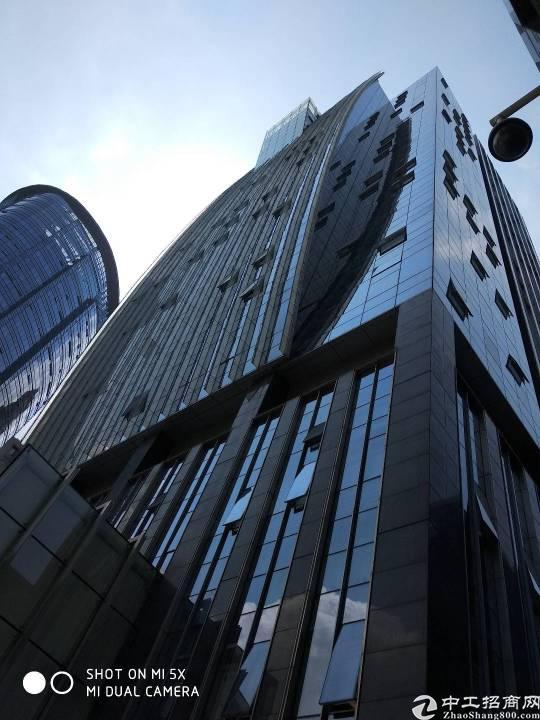 出租)宝安中心区龙光世纪360平电梯口豪装双采光