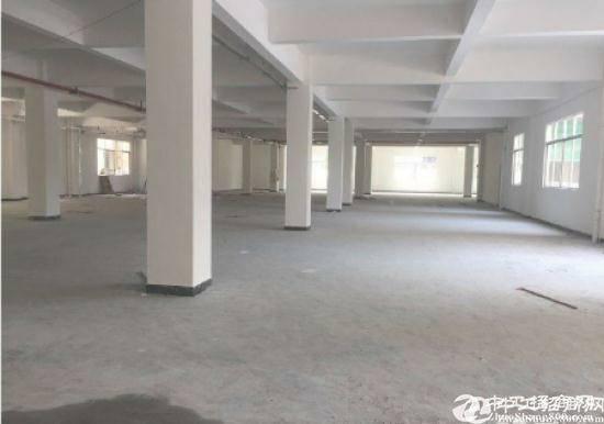 平安大道一楼厂房2500平米出租
