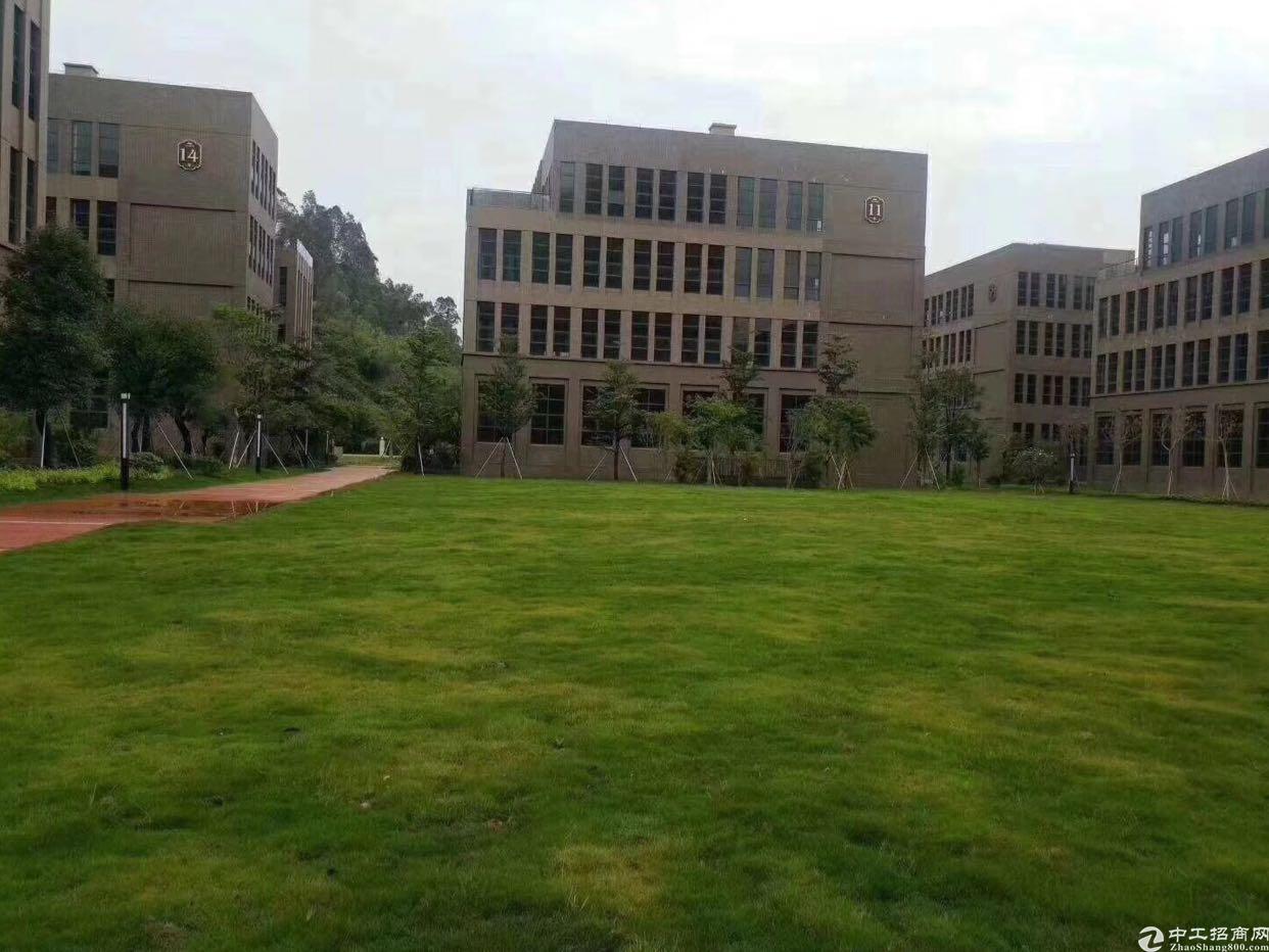 布吉花园式红本独院24000平方可以做数据库低价出租