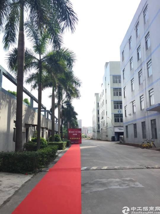 坂田万科城后面15万平米厂房,红本有消防喷铃,带卸货平台