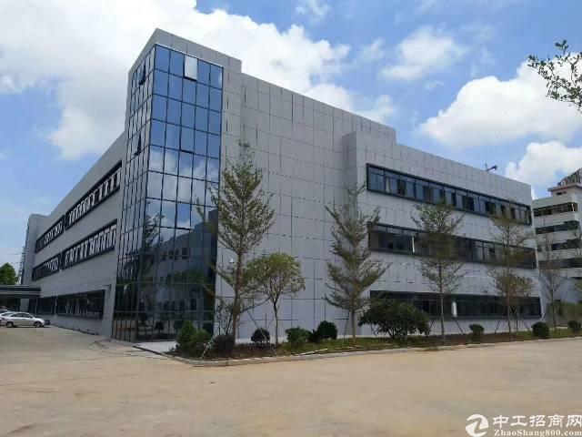 万江环城路旁标准厂房出租30000平方租13元