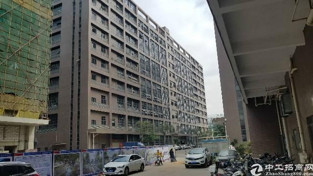 松岗潭头独院1-9层新建厂房36000平米、形象好
