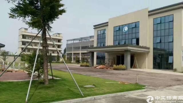 桥头镇新出独院标准厂房1-2层加单一层总面积42800平方