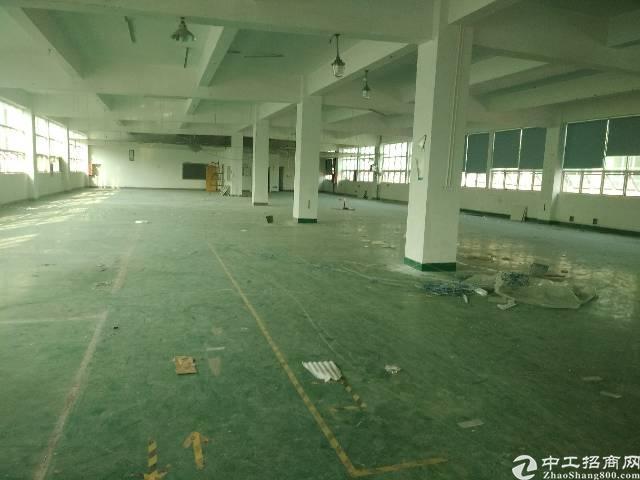 沙井沙三大型工业园区精装修厂房1600平方二楼整层-图3