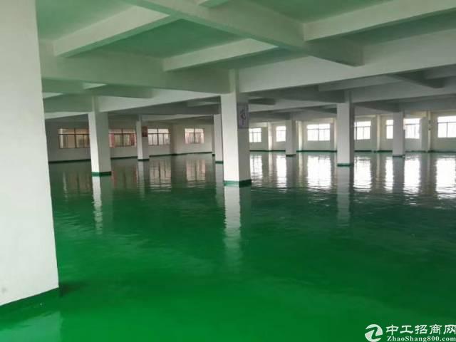 惠州惠城区水口带全新地坪漆楼上厂房出租-图2