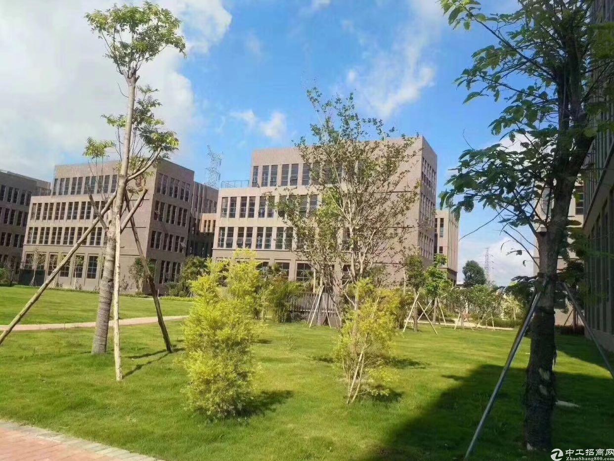 布吉花园式红本独院24000平方可以做数据库低价出租-图2