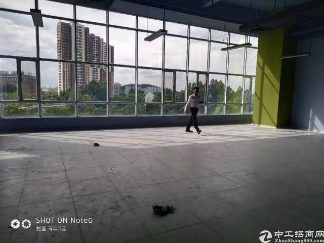 横岗新马眼镜城附近新出独院一楼带装修层高6米厂房出租-图2