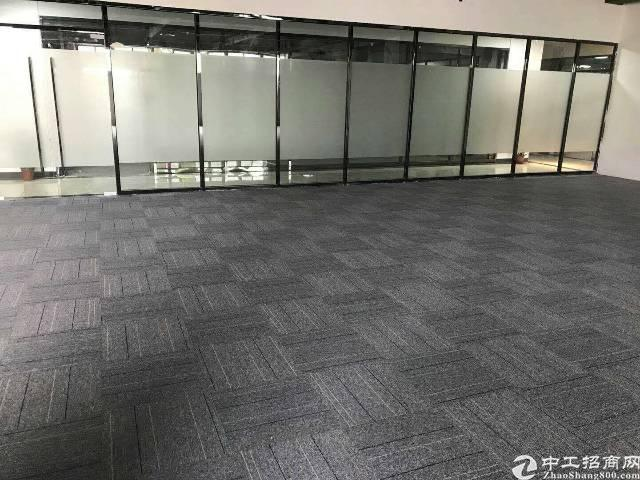 布吉丹竹头地铁站300米内,写字楼办公2000平方,可分租-图3