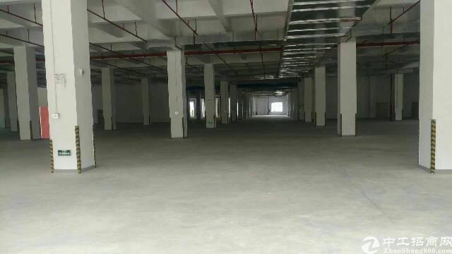 松岗高速出口红本厂房61000平方出租