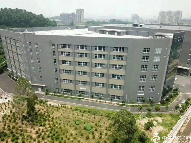 西乡黄田大型工业区一楼5000平方厂房出租-图4