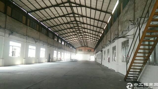 广州新塘厂房出租