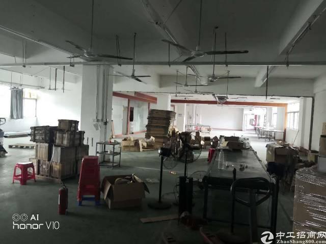 平湖华南城边上新出一楼780平方标准厂房招租