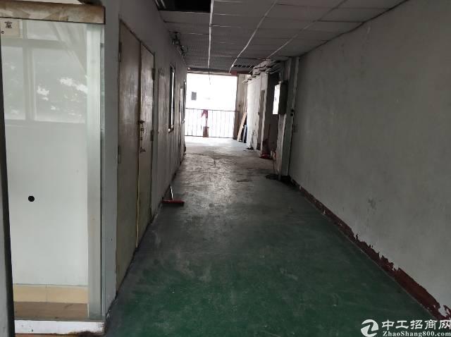 西乡大益广场旁厂房650平-图2