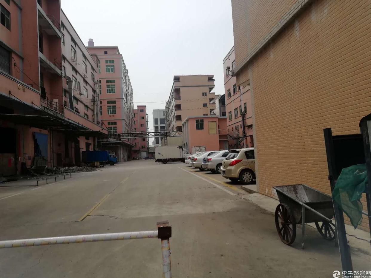 广州新塘独门独院厂房出租-图2