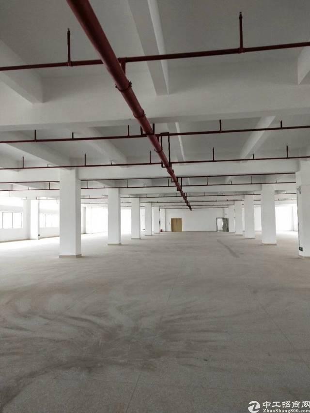 桥头新出全新标准厂房啦,大型工业区,-图2