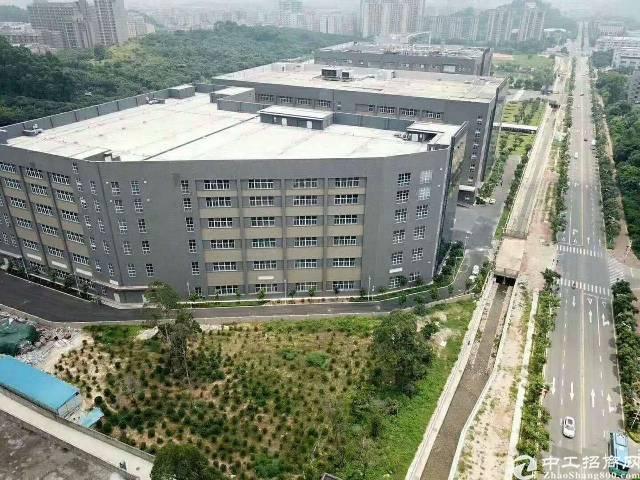 西乡黄田大型工业区一楼5000平方厂房出租-图2
