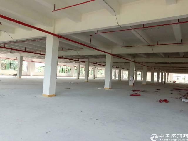 茶山新出原房东独院厂房三层10000平方