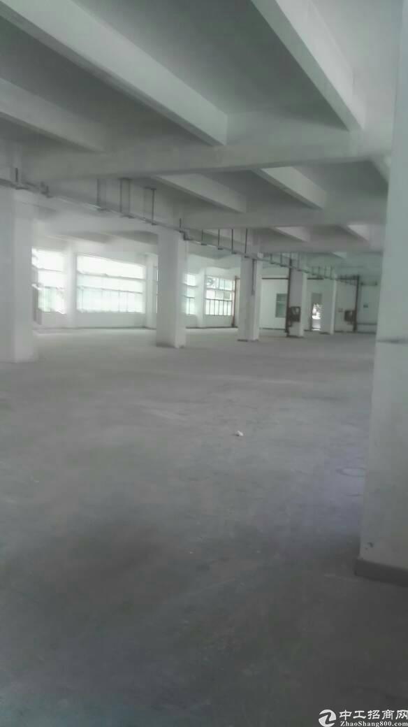 布吉联创科技园新出一楼1700平标准厂房出租-图2