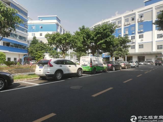 西乡桃源居附近新出楼上1150平稀缺厂房出租,-图3