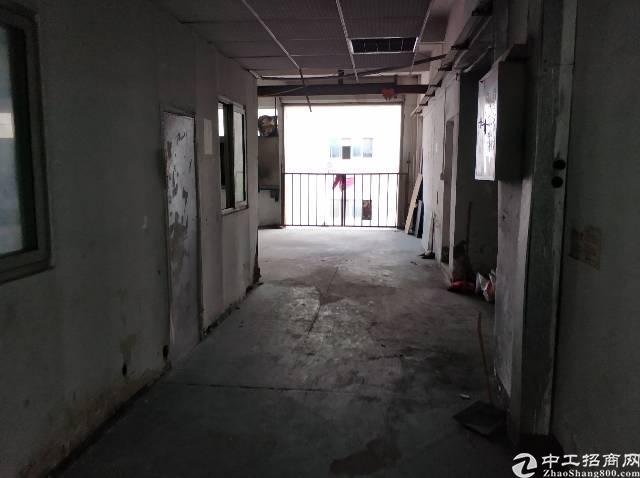 西乡大益广场旁厂房650平