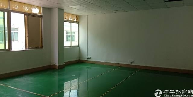 独院厂房 龙岗中心城-图7