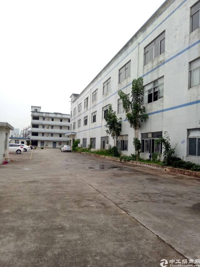 坑梓秀新工业园分租一楼厂房1200平米