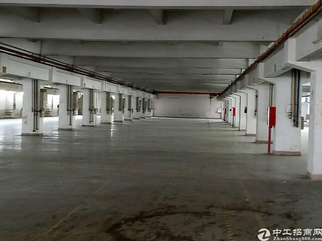 东莞东城新岀3000平方带行车厂房