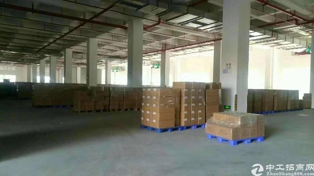 龙华区新出一楼2600平,6米高,货柜车在园区随便掉头