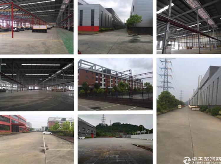 新塘镇国家经济开发区60000平方米独院厂房