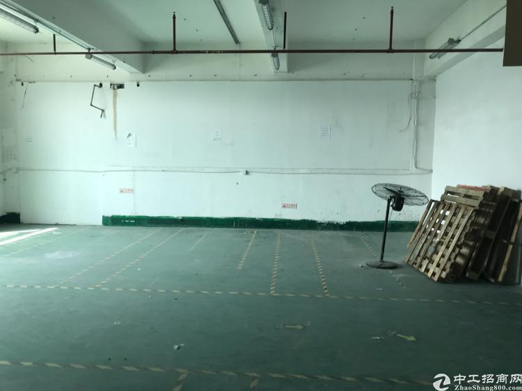 坂田新出480平米厂房出租-图3