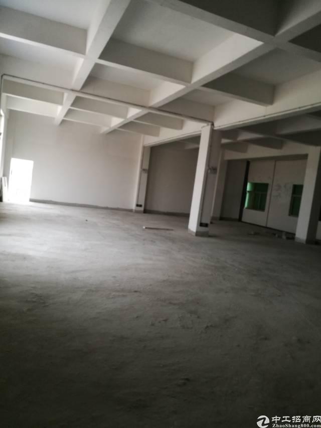 高埗镇工业园区分租标准厂房1楼!