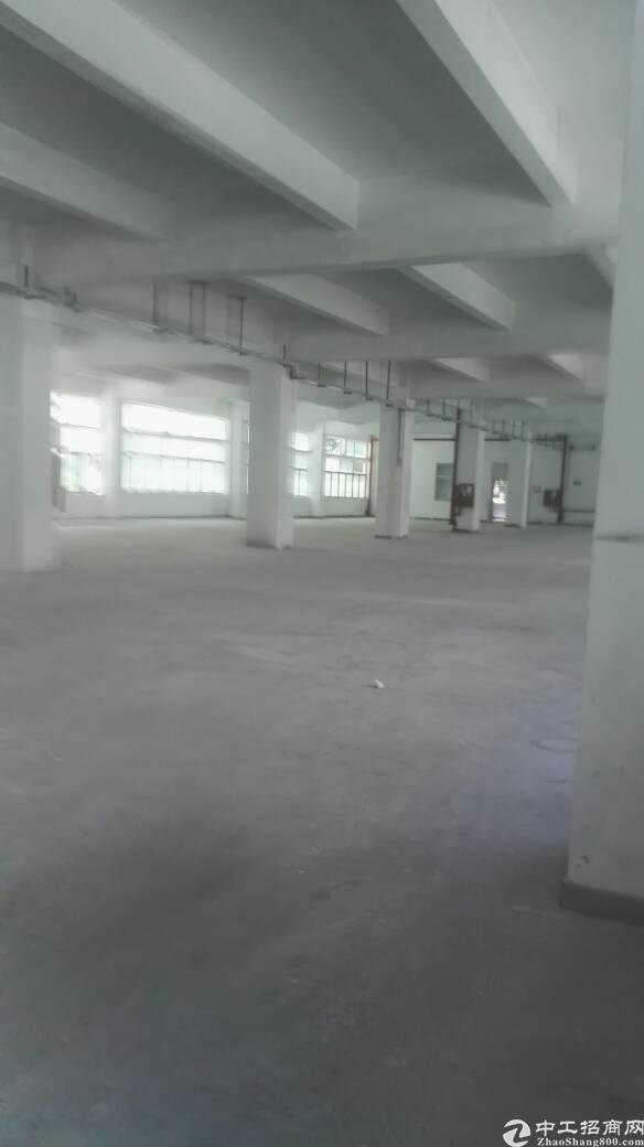 布吉联创科技园新出550平带装修标准厂房出租-图5