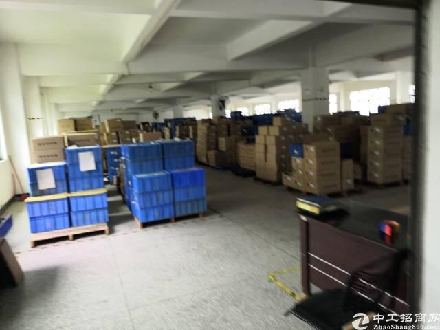 花园式独院厂房4000平方米火爆招租-图2
