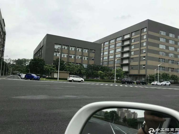 松岗高新产业园带红本独栋厂房63000平方